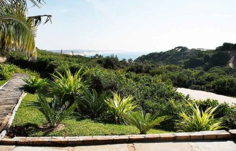 Path through the plants with a ocean view - Beach Resorts Mozambique - Guinjane Lodge